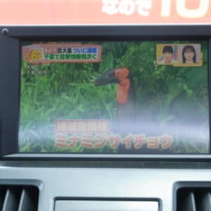 SAI S ハイブリッド【総合評価優良車】